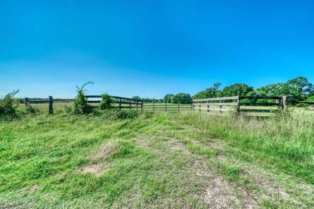 TBD Bozeman Ferry Rd Road, Midway, TX 75852 (MLS #97558795) :: The Heyl Group at Keller Williams