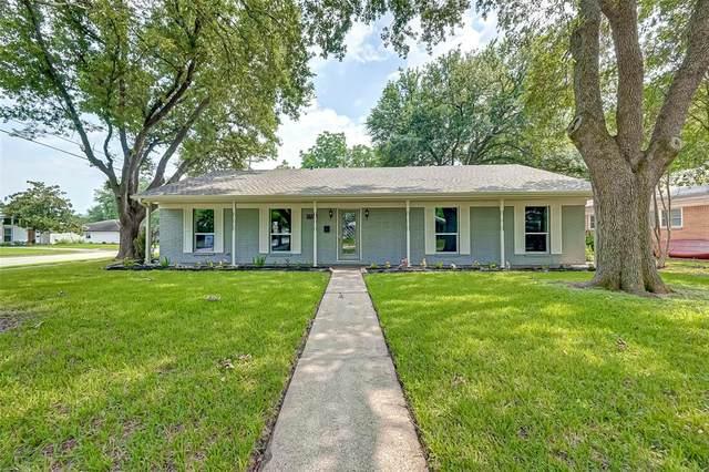5703 Capello Drive, Houston, TX 77035 (#9758343) :: ORO Realty