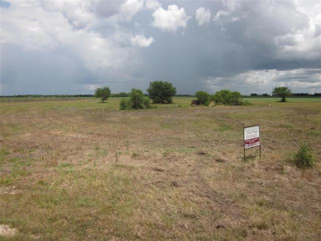 12131 Westview, Needville, TX 77461 (MLS #97590978) :: The SOLD by George Team