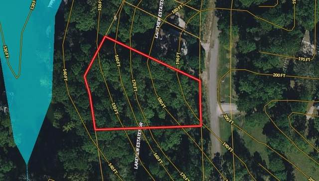 TBD (Lot 52-53) Lakeview Estate Drive, Coldspring, TX 77331 (MLS #97618473) :: The Home Branch