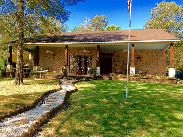 467 W Lake Drive, Livingston, TX 77351 (MLS #97637072) :: Mari Realty