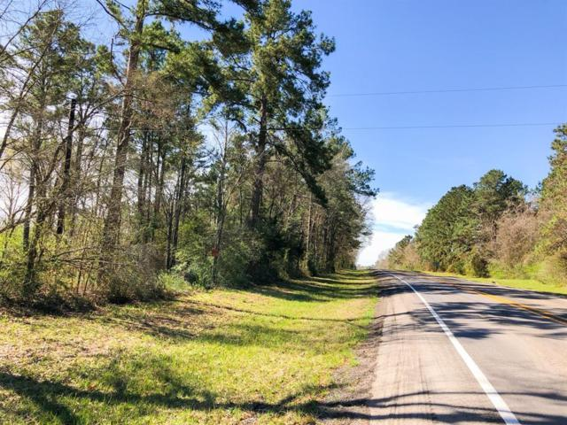 19 Ac End Of Richards Road, Cleveland, TX 77327 (MLS #97646390) :: The Heyl Group at Keller Williams