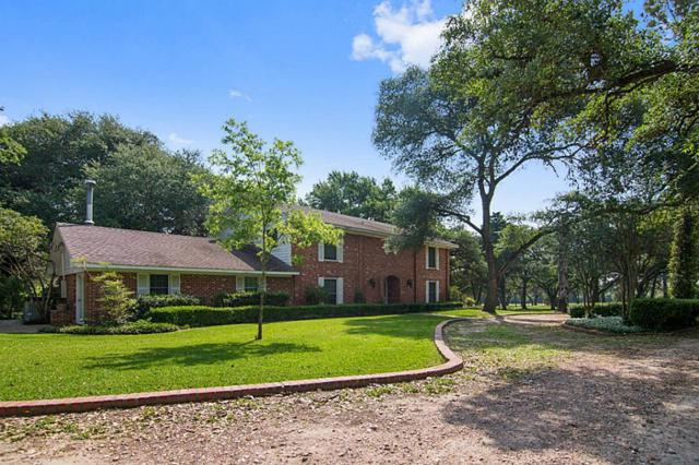438 Marty Road, Schulenburg, TX 78956 (MLS #9770816) :: The SOLD by George Team