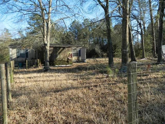 29606 Stonehaven Drive, Magnolia, TX 77354 (MLS #9771681) :: Michele Harmon Team
