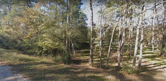 0 Echo Lane, Houston, TX 77336 (MLS #9772501) :: Parodi Group Real Estate