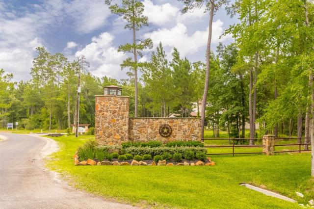 3a-16-3 and 3a-16-4 Grand View, Huntsville, TX 77340 (MLS #9782580) :: The SOLD by George Team