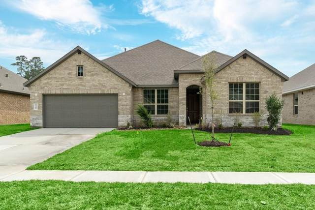 10209 Goose Creek, Conroe, TX 77384 (MLS #97850849) :: Giorgi Real Estate Group