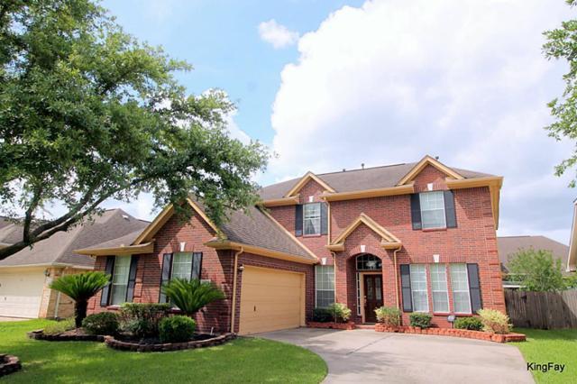 4623 Schiller Park Lane, Sugar Land, TX 77479 (MLS #97919106) :: See Tim Sell