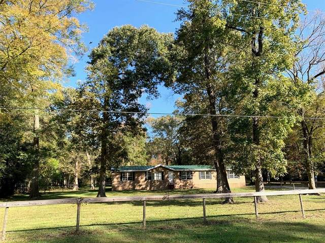 203 County Road 67632, Dayton, TX 77535 (MLS #97960067) :: Christy Buck Team
