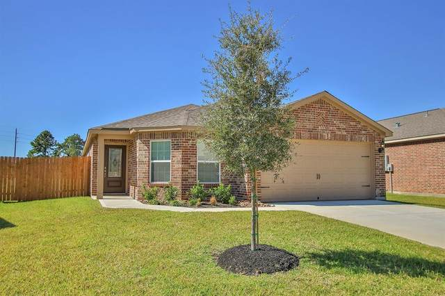 20822 Sunshine Meadow Drive, Hockley, TX 77447 (MLS #97968832) :: The SOLD by George Team