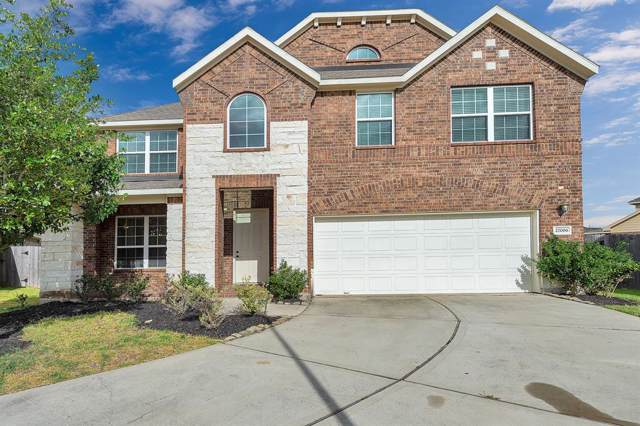 27006 Colt Sky Court, Katy, TX 77494 (MLS #97989076) :: The Jill Smith Team