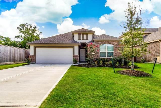 25205 Honey Lamb Lane, Porter, TX 77365 (MLS #9813141) :: NewHomePrograms.com LLC