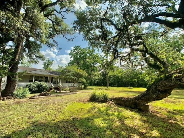2912 County Road 347, Brazoria, TX 77422 (MLS #98309763) :: Keller Williams Realty
