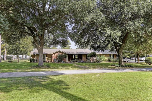 13120 Noack Road, Magnolia, TX 77355 (MLS #98316484) :: Krueger Real Estate