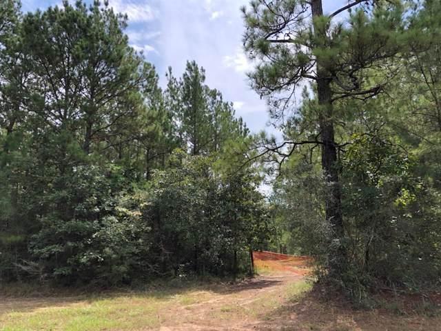 0 Fm 1943, Warren, TX 77664 (MLS #98330476) :: Phyllis Foster Real Estate