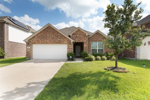 26014 Haggard Nest Drive, Katy, TX 77494 (MLS #98343106) :: Giorgi Real Estate Group