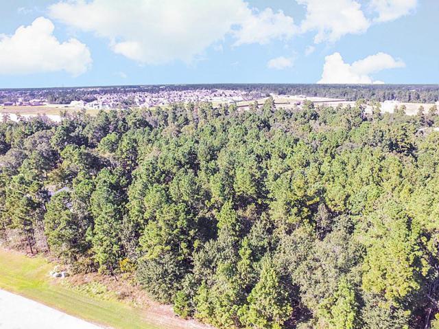3911 Epic Drive, Spring, TX 77386 (MLS #98405975) :: Krueger Real Estate