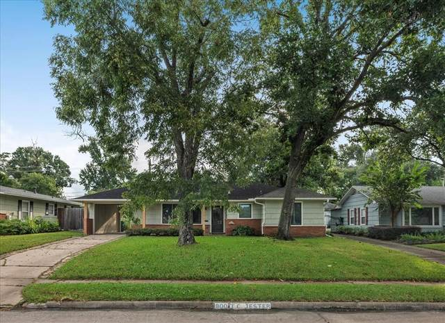 830 T C Jester Boulevard, Houston, TX 77008 (MLS #98567590) :: Texas Home Shop Realty