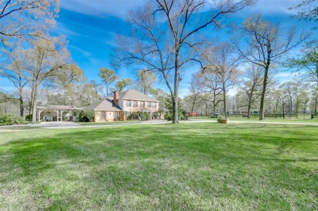 15719 Old Conroe Road, Conroe, TX 77384 (MLS #9859417) :: Texas Home Shop Realty