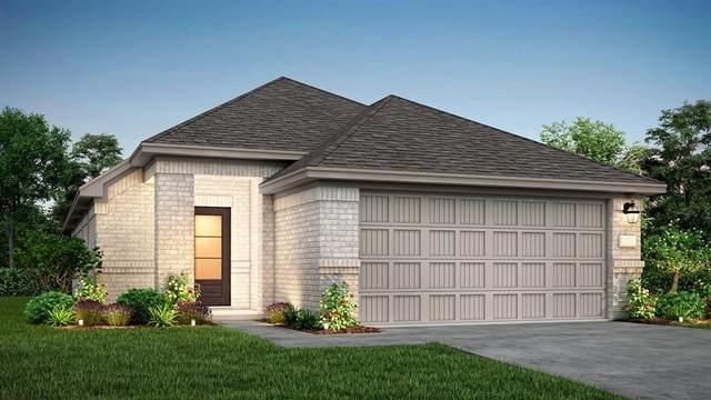 124 Shadow Leaf Trail, Willis, TX 77378 (MLS #98678860) :: NewHomePrograms.com