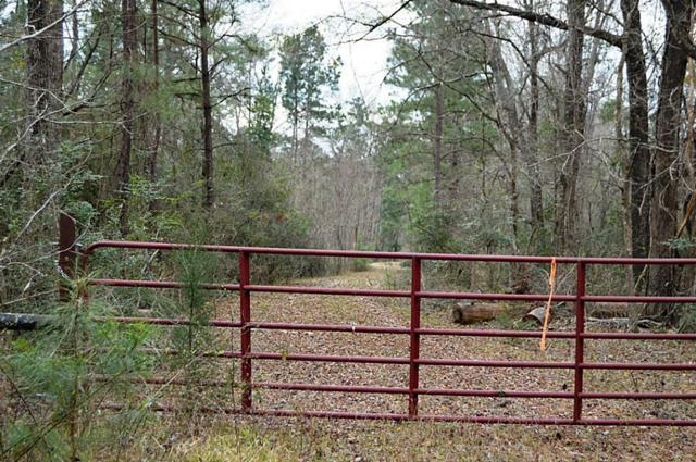 TBD Sylvia Trail, Coldspring, TX 77331 (MLS #98707852) :: Texas Home Shop Realty