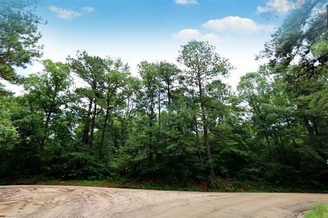 TBD County Rd 1052, Wiergate, TX 75977 (MLS #987533) :: The SOLD by George Team