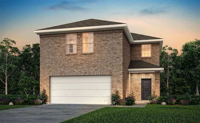 20006 Northpark Oak Lane, Porter, TX 77365 (MLS #98806602) :: The SOLD by George Team