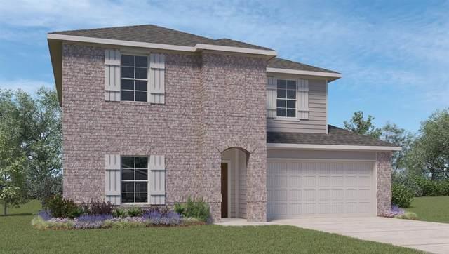 305 Kickapoo Drive, Anahuac, TX 77514 (MLS #9881052) :: Green Residential