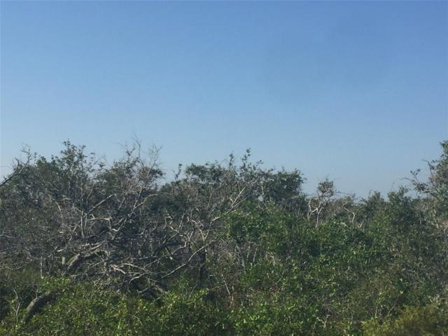 502-522 Hailey, Rockport, TX 78382 (MLS #98810914) :: The SOLD by George Team