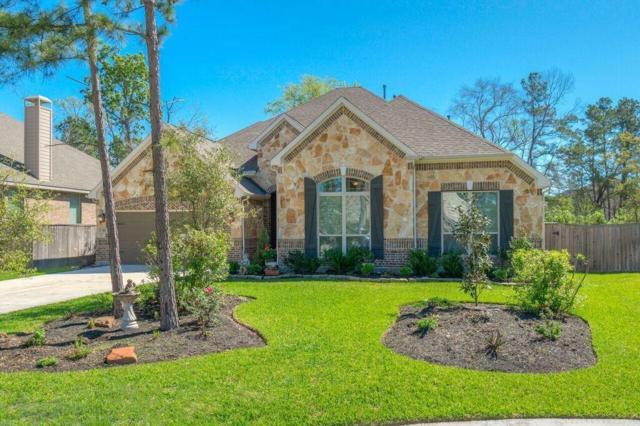 161 Haileys Run, Montgomery, TX 77316 (MLS #98863782) :: Fairwater Westmont Real Estate