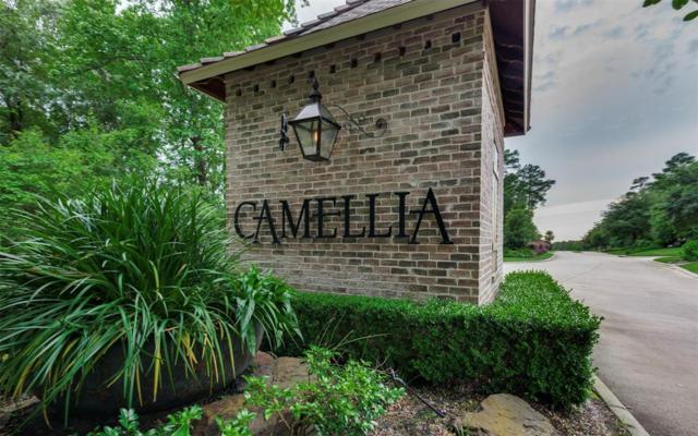 46 Trellis Court, Conroe, TX 77304 (MLS #98885059) :: Connect Realty
