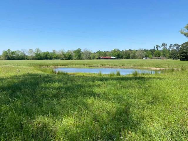 21 Acres County Road 4550, Spurger, TX 77660 (MLS #9921900) :: The Sansone Group