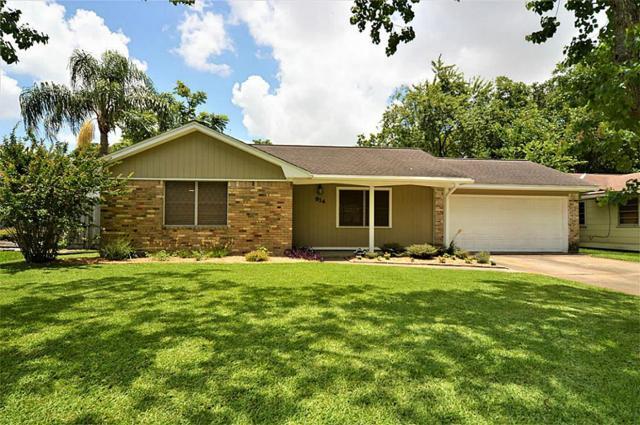914 Peggy Street, Deer Park, TX 77536 (MLS #99236497) :: The SOLD by George Team