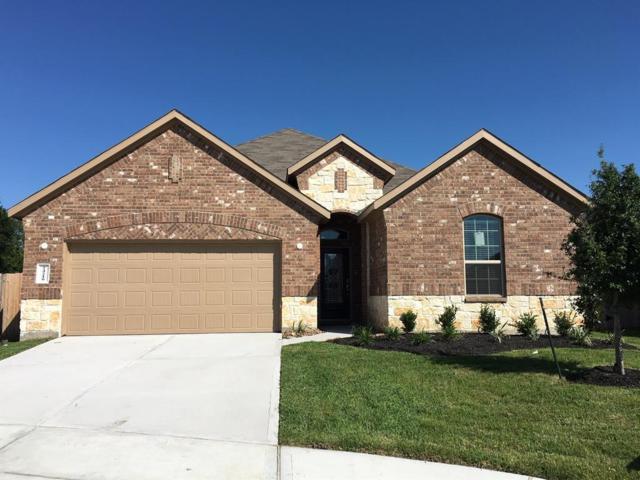 24210 Birchwood Creek Court, Spring, TX 77389 (MLS #9929969) :: Giorgi Real Estate Group