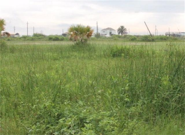 0 N Hamm, Gilchrist, TX 77617 (MLS #99980014) :: See Tim Sell