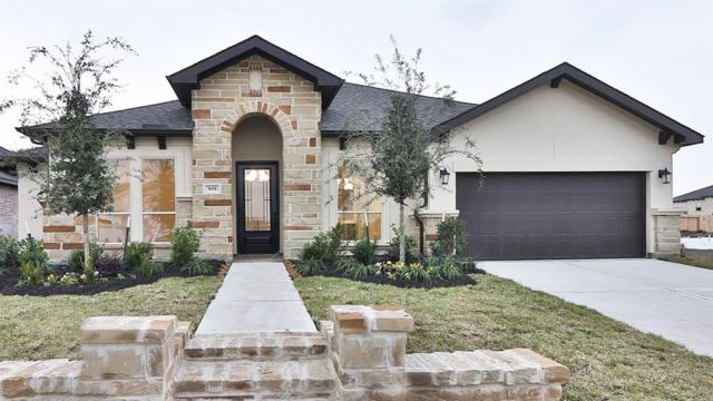 808 Galloway Mist Lane, Friendswood, TX 77546 (MLS #10121965) :: Connect Realty