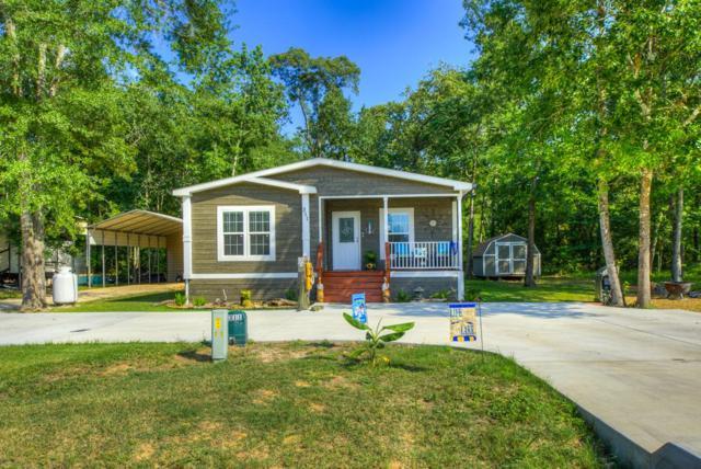 311 Leaning Oak Drive, Point Blank, TX 77364 (MLS #11576590) :: Mari Realty