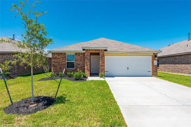 29706 Foliage Lane, Katy, TX 77494 (MLS #11693821) :: The Jennifer Wauhob Team