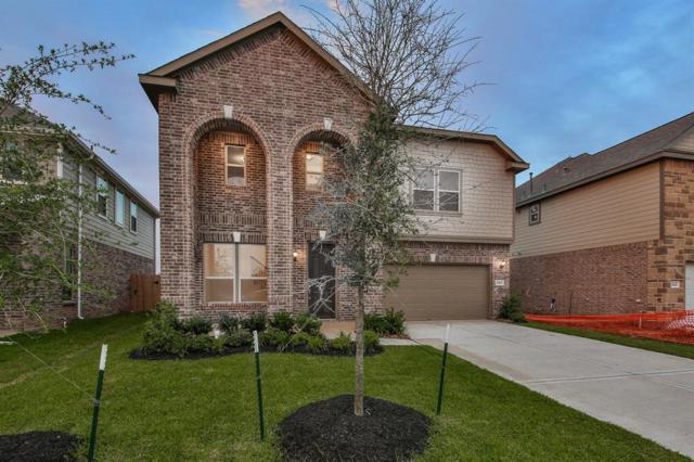 28430 Buffalo Fork Lane, Katy, TX 77494 (MLS #11793835) :: Texas Home Shop Realty