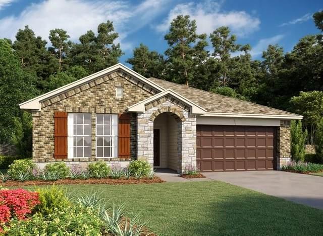 31434 Dell Valley Lane, Hockley, TX 77447 (MLS #11796184) :: The Jennifer Wauhob Team
