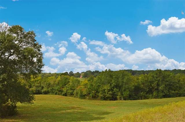 13526 County Road 407 - 126 Acres, Navasota, TX 77868 (MLS #12775960) :: The Bly Team