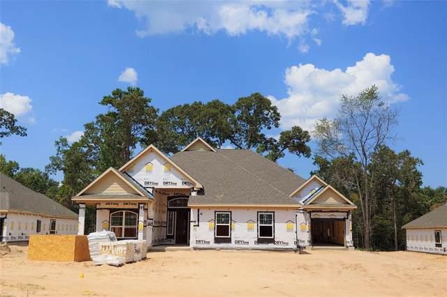 211 Magnolia Reserve Loop, Magnolia, TX 77354 (MLS #13192076) :: The Jill Smith Team