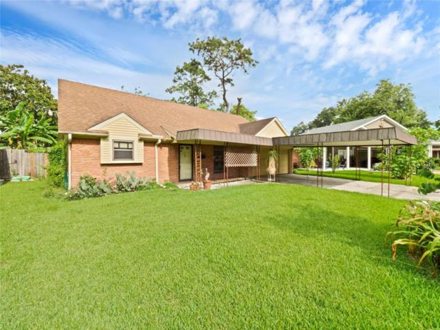 203 Hummingbird Court, Pasadena, TX 77502 (MLS #13650391) :: NewHomePrograms.com LLC