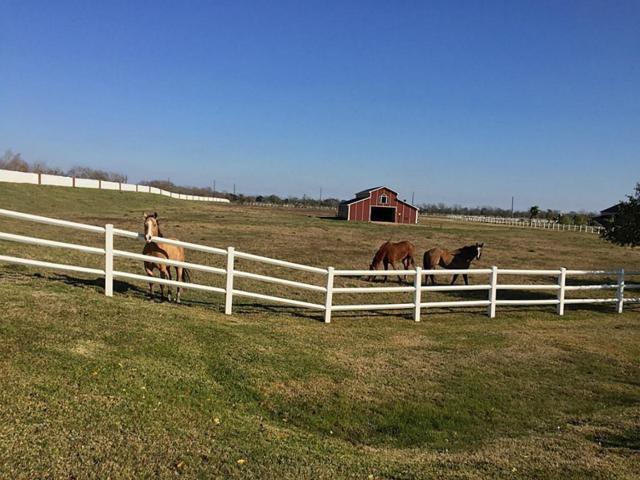 8834 Aubrey Lane, Richmond, TX 77469 (MLS #14287124) :: Giorgi Real Estate Group