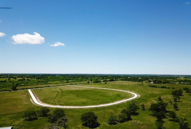 TBD - Lot 8 Cr 220, Anderson, TX 77830 (MLS #14361548) :: The SOLD by George Team