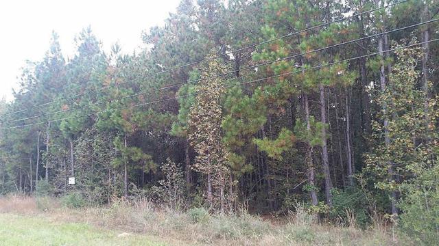 TBD Fm 1314, Conroe, TX 77302 (MLS #14556284) :: Magnolia Realty
