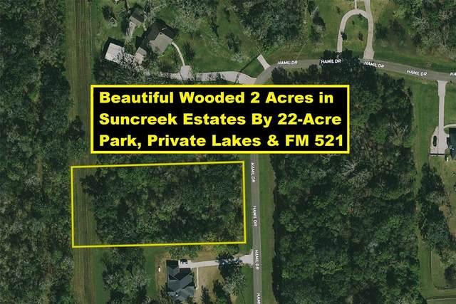 17226 Hamill Drive, Rosharon, TX 77583 (MLS #14994486) :: Keller Williams Realty