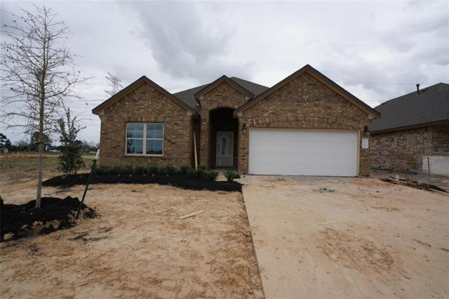 2726 Ahnya Lane, League City, TX 77573 (MLS #15197143) :: REMAX Space Center - The Bly Team