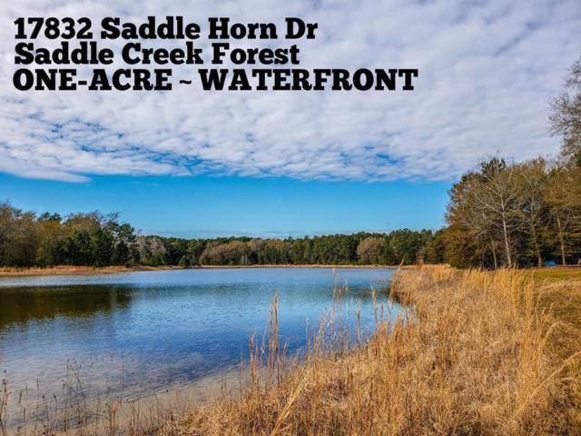17832 Saddle Horn Drive, Waller, TX 77484 (MLS #15526935) :: The Parodi Team at Realty Associates