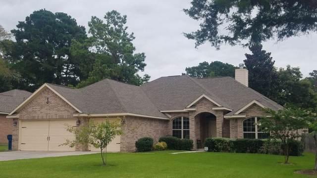 12636 Virgo Drive, Willis, TX 77318 (MLS #15683027) :: The Home Branch